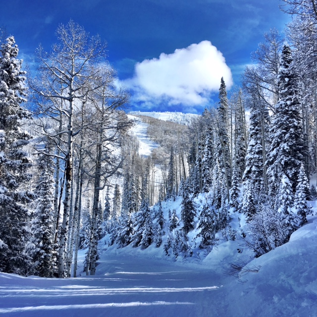 """Perfect day on Mount Werner."" Submitted by Verleen Tucker."