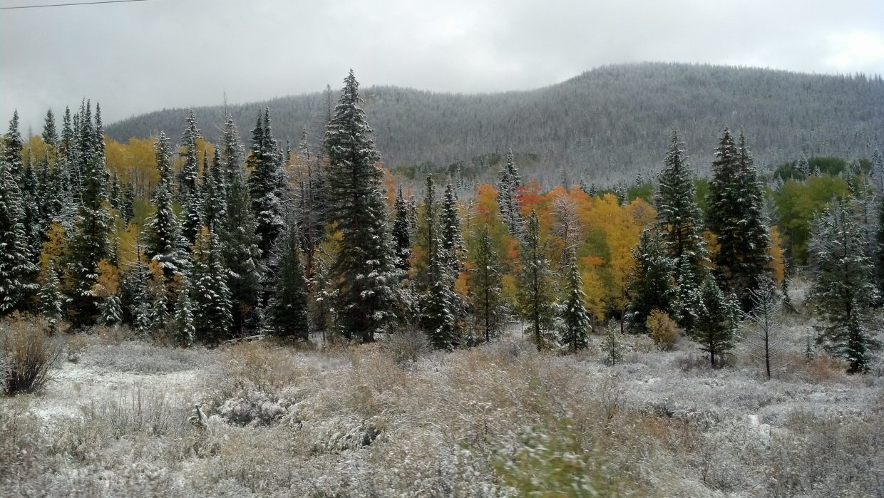 First snow, Gore Pass. September 23. Submitted by Diana Wheeler.