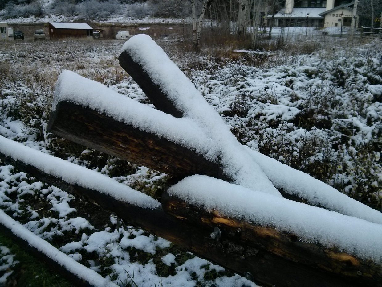 First snowfall of the season! Submitted by: Carlos Oliveira