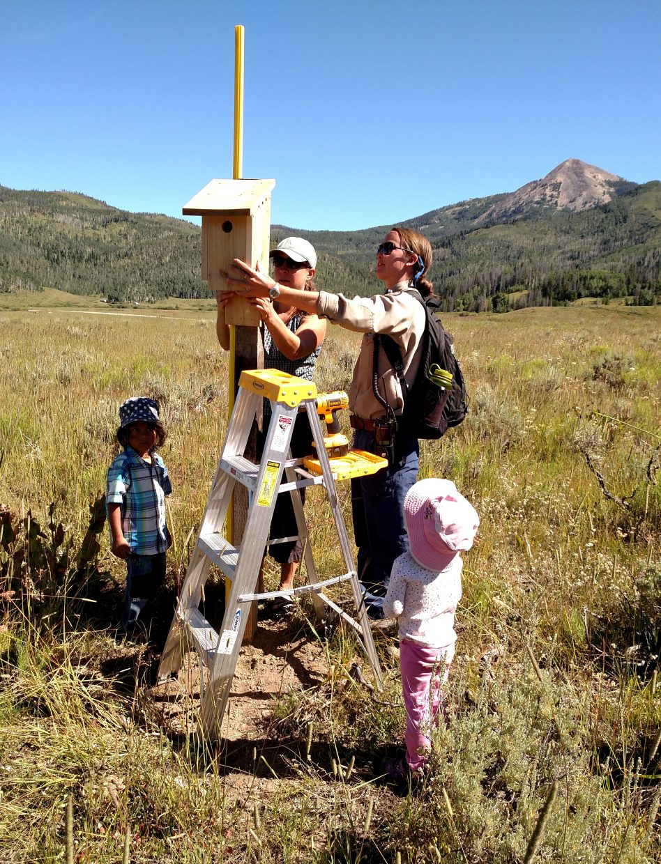 North Routt Preschool students and their teachers help Steamboat Lake Staff hang bluebird boxes. Submitted by Julie Arington.