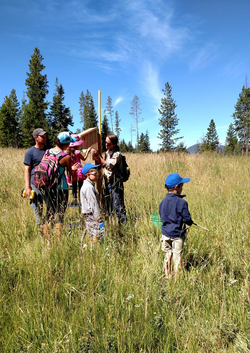 North Routt Preschool kids and their teachers help install new bluebird boxes at Steamboat Lake State Park. Submitted by Julie Arington.