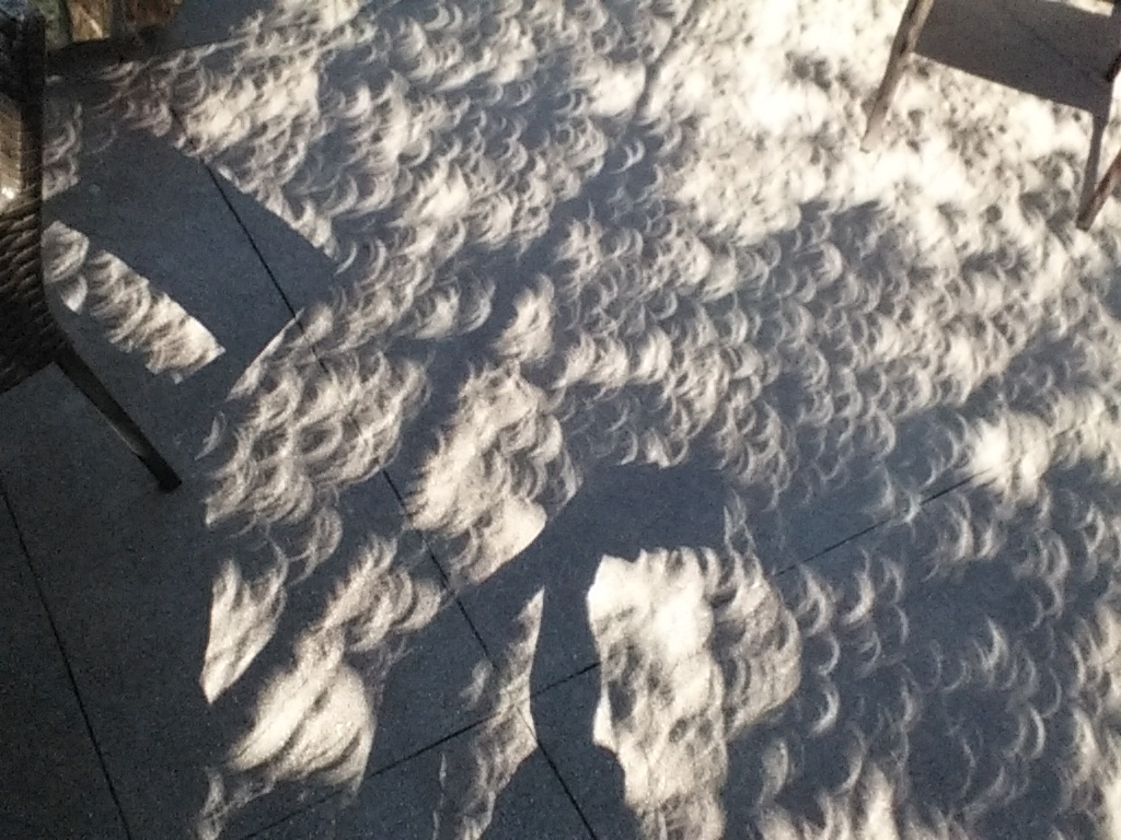 Sunlight filtered through tree leaves onto a concrete patio during the solar eclipse on Monday, August 21, 2017.