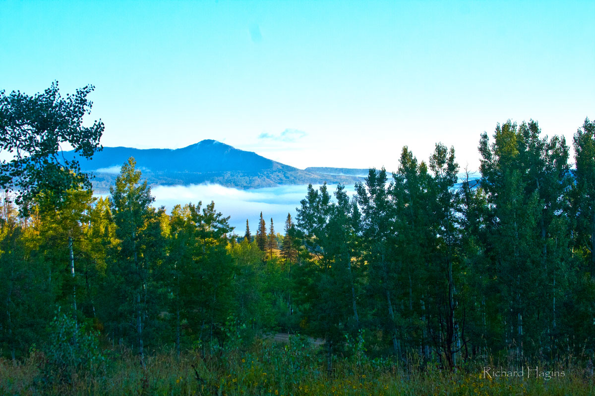 Foggy Morning, California Park 09/10/2014. Submitted by Festus Hagins.