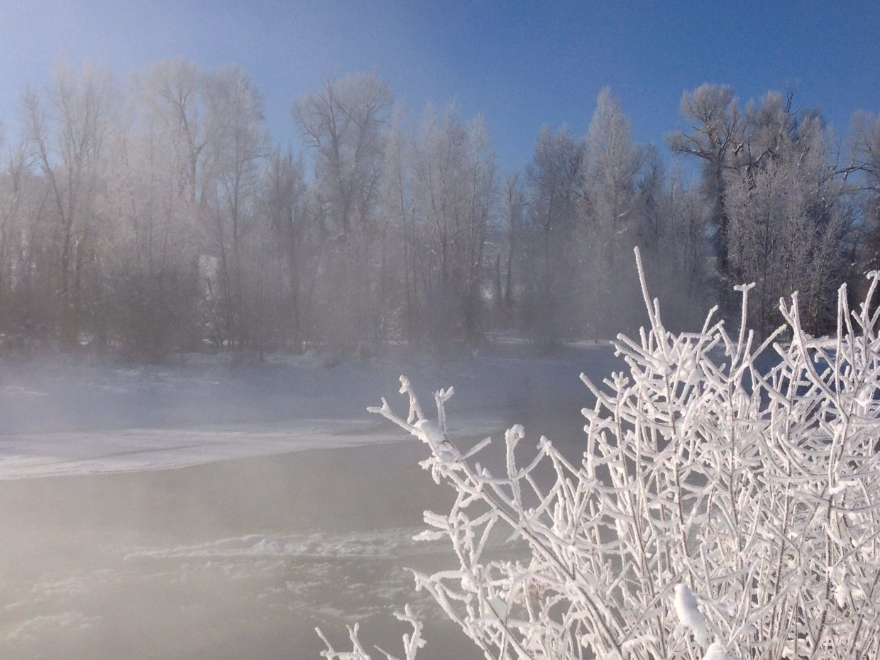 Cool morning on the Yampa River. Submitted by: Jeff Hall