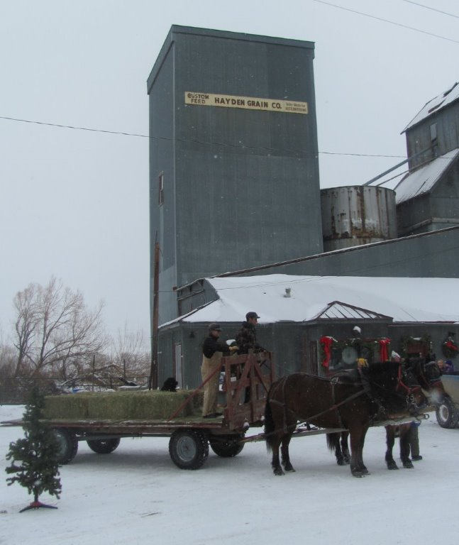 Rebecca Wattles and her son Ryan Wattles gave sleigh rides from Wild Goose Coffee at the Hayden Granary to the Hayden Heritage Museum as part of the 2013 Holiday Stroll. Submitted by: Annette Zuber