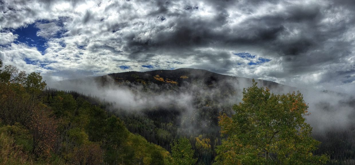 Catamount. Submitted by: Chris Lanham