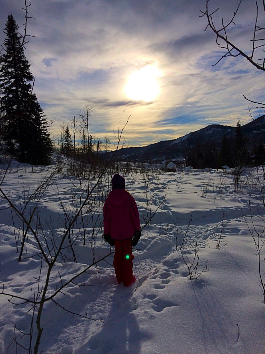 A winter hike along Fish Creek. Submitted by: Linda Briseno.