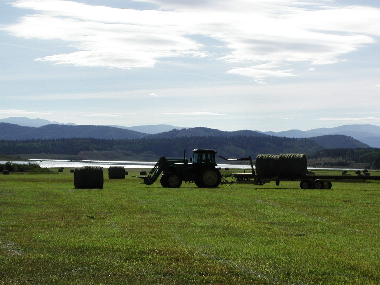 Jay Fetcher moving bales west of Steamboat Lake at Hahn's Peak. Submitted by Bill Fetcher.
