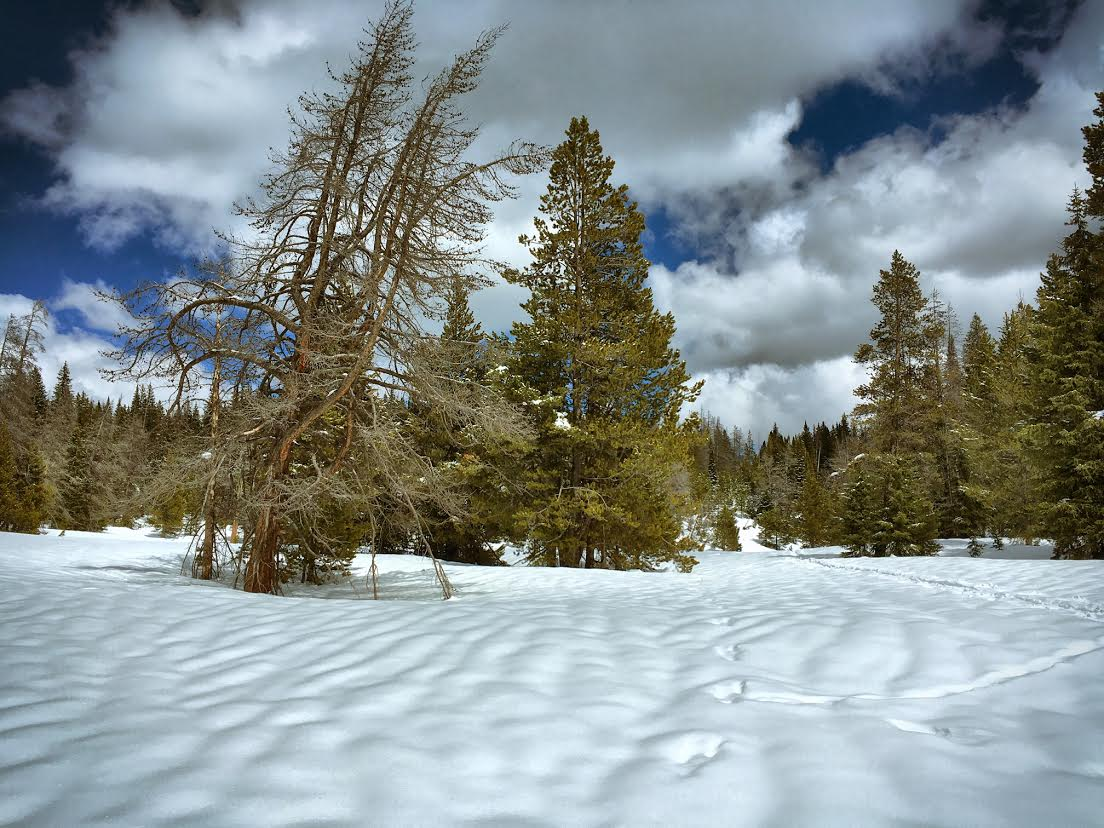 """""""Still looks like winter on Rabbit Ears."""" Submitted by Jeff Hall."""