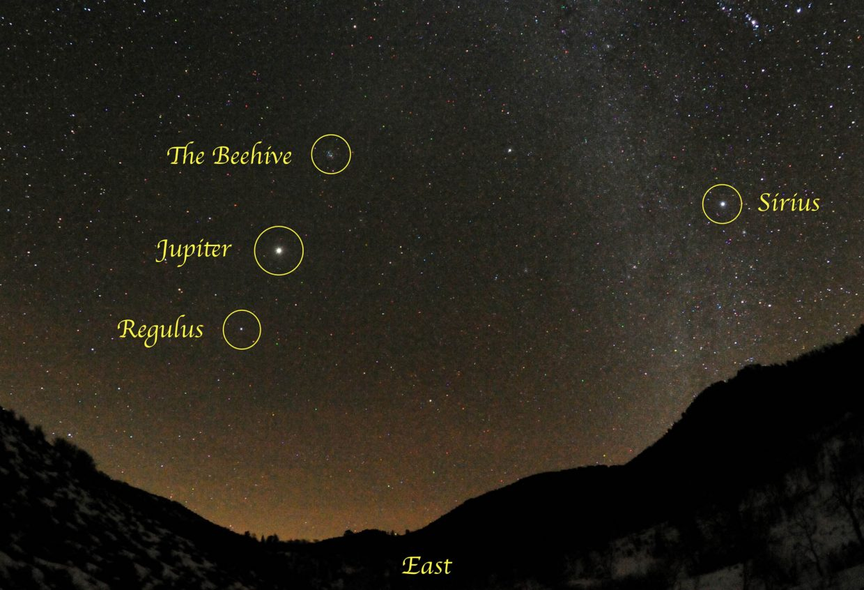Catch the King of the Planets, Jupiter, rising high in the eastern sky during the early evening this month. It sits about midway between Leo's alpha star, Regulus, and Cancer's fuzzy little star cluster, the Beehive. Binoculars or a small telescope will reveal Jupiter's four big moons: Io, Europa, Ganymede and Callisto.