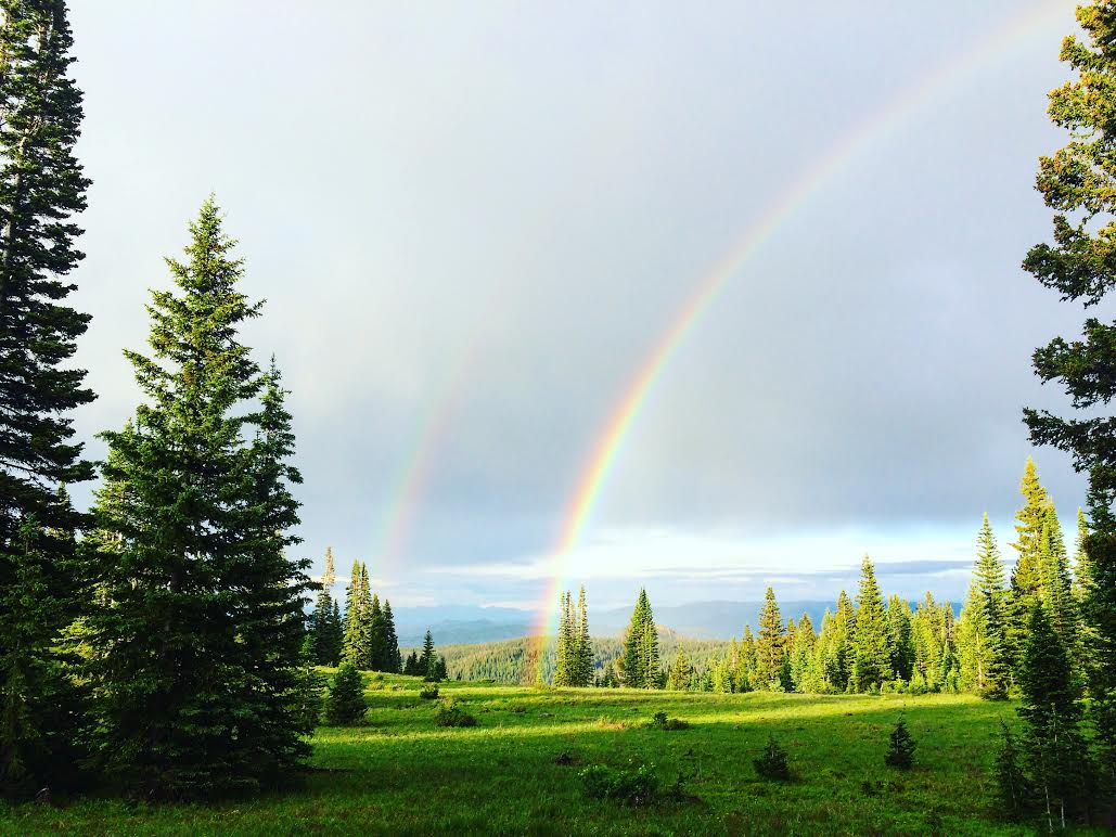 The end of the rainbow up Harrison Creek Road. Submitted by Kim Bjorgum.