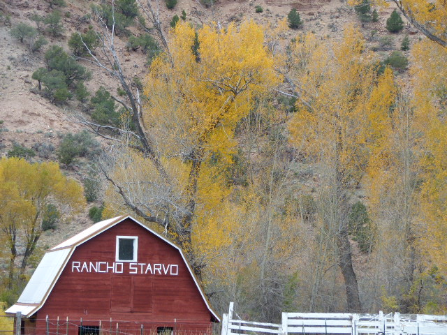 On the Colorado River Road on the Routt County border. Submitted by Sue Hansen.