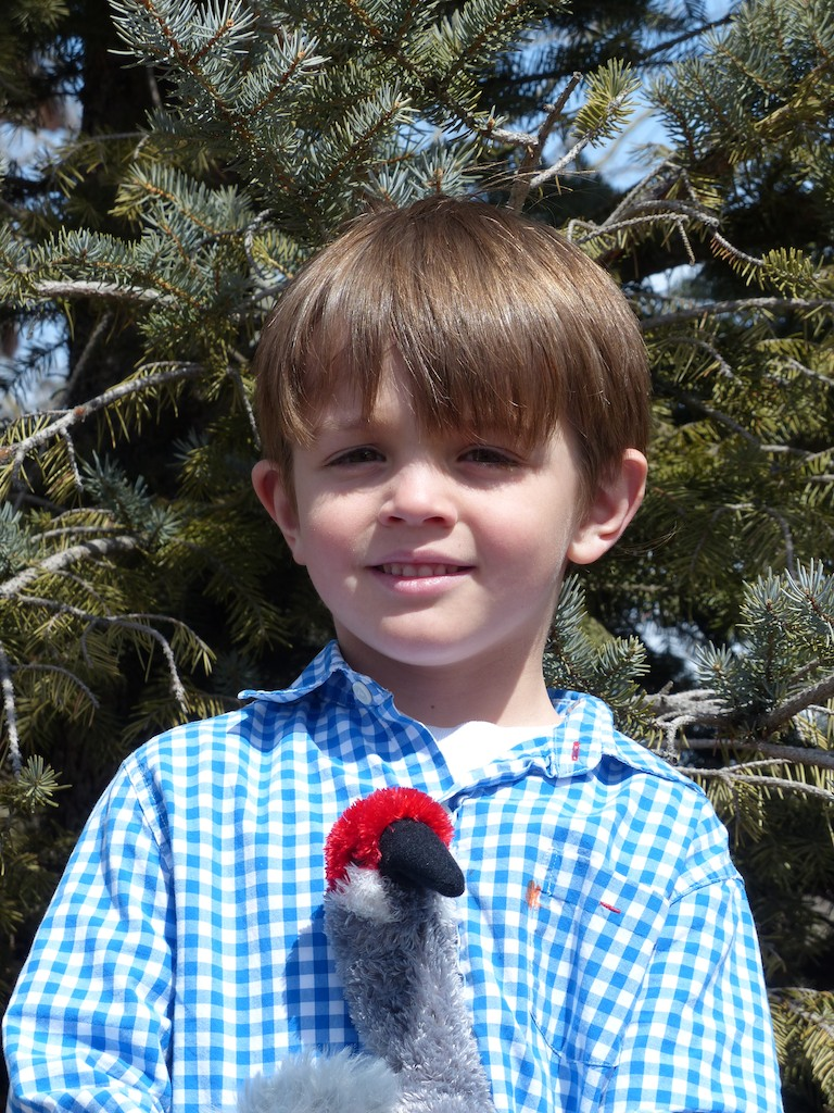 Charlie Gunn, age 5, of Steamboat Springs, was the youngest participant in the 2014 contest to sight the first crane. Submitted by Nancy Merrill.