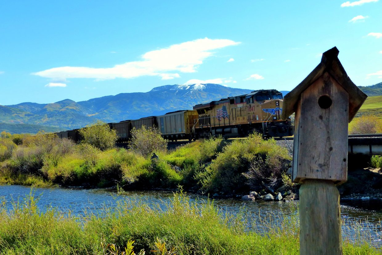 The train came rolling through the Yampa Valley on Sunday afternoon and went right by the golf course. I was on the third hole and zipped up there and took this picture. Submitted by: Shannon Lukens