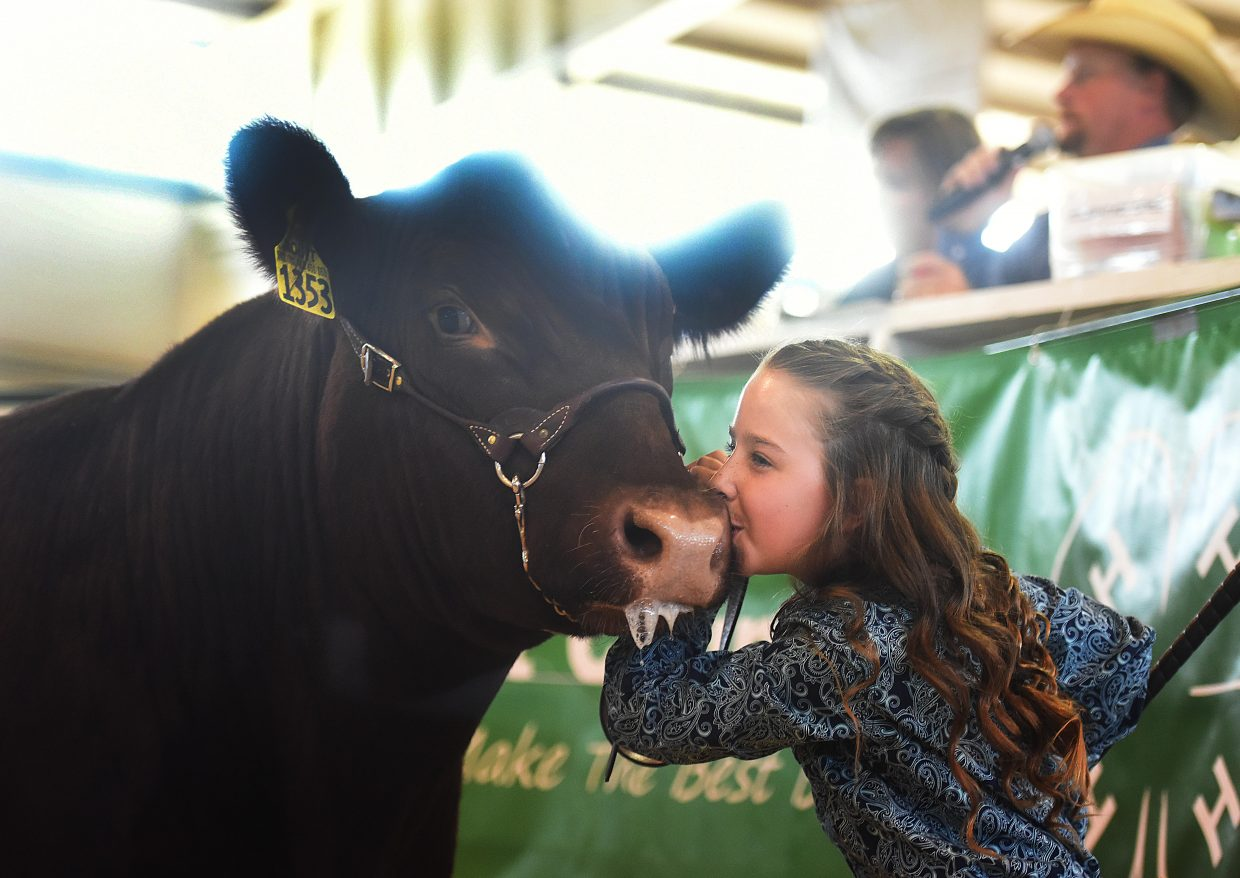 Josie Meyring gives her steer, Cinnamon, a kiss after he was auctioned off Saturday during the Riley County Fair Junior Livestock sale in Hayden.