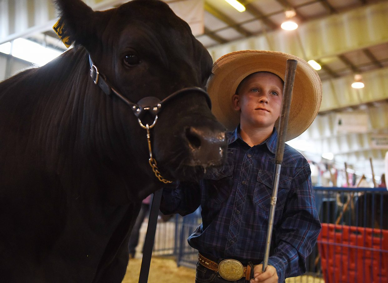 Lloyd Warren and Smokey wait for their chance to take the stage Saturday at the Routt County Fair Junior Livestock sale in Hayden.
