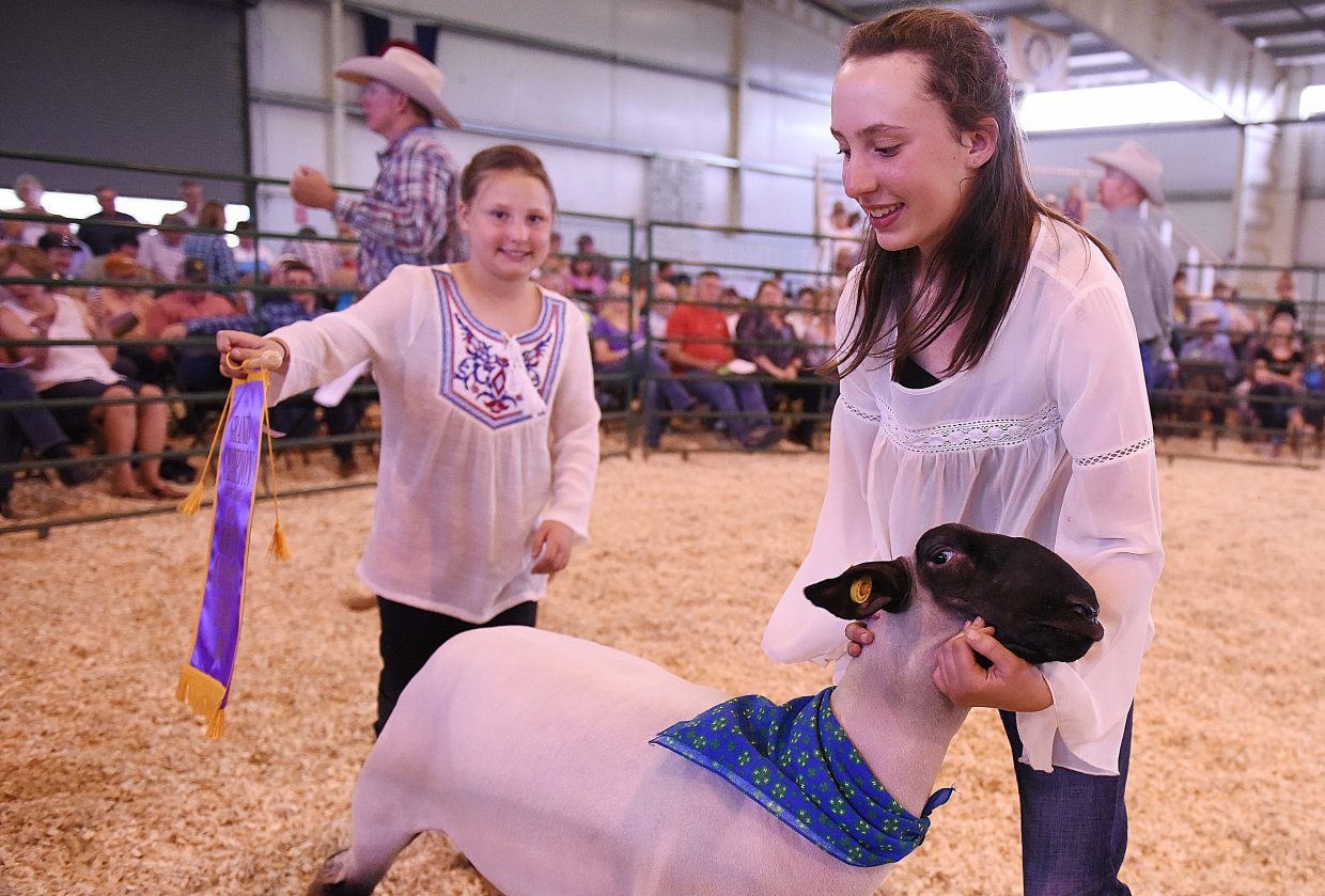 Kayla Rossi hangs on to her grand champion sheep Saturday at the Routt County Fair Junior Livestock sale in Hayden.