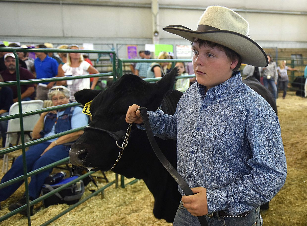 Kollen Decker waits his turn to show off his steer Saturday at the Routt County Fair Junior Livestock sale in Hayden.