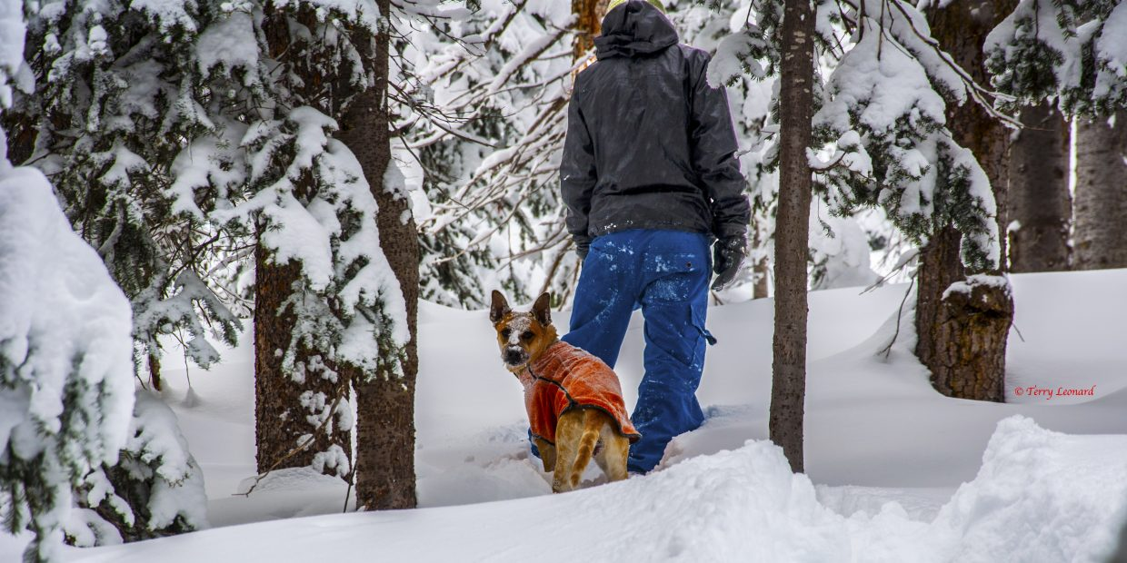 Marc Leonard and Westin snowshoeing on Rabbit Ears Pass. Submitted by: Terry Leonard.