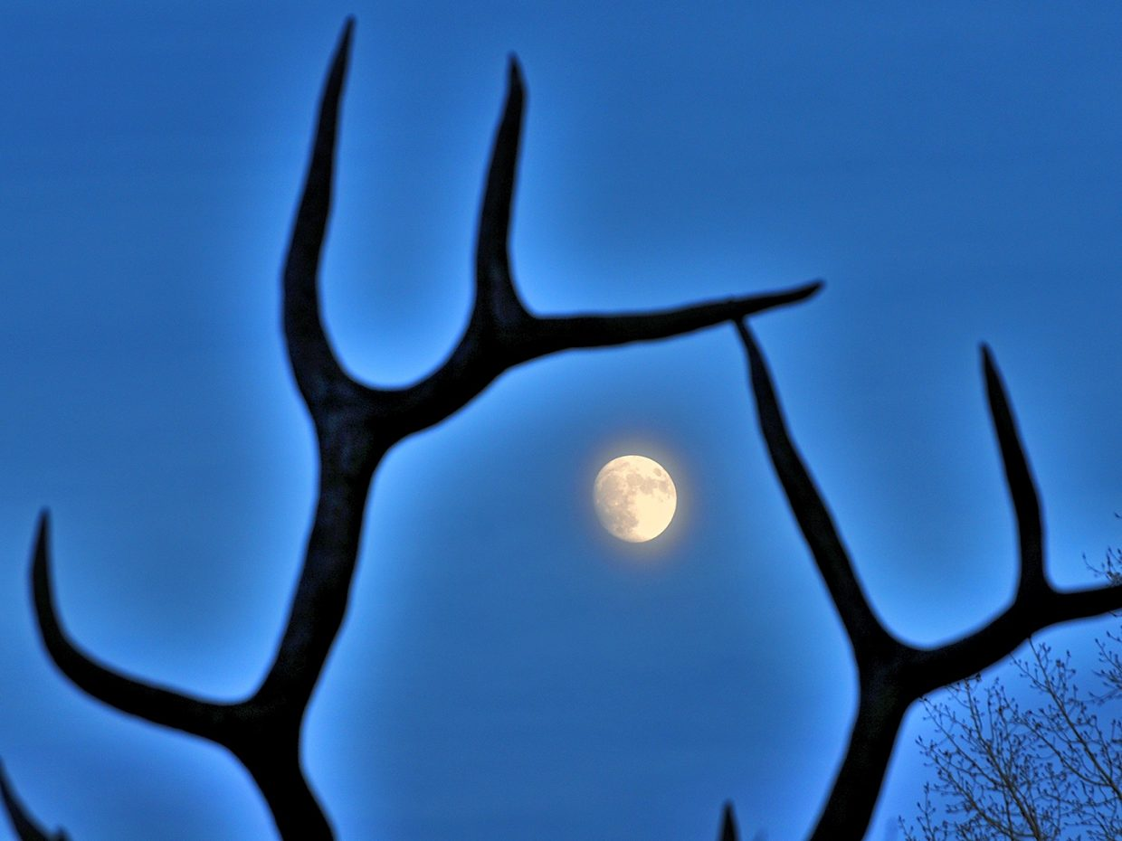 Moonrise over Steamboat. Submitted by Jeff Hall.