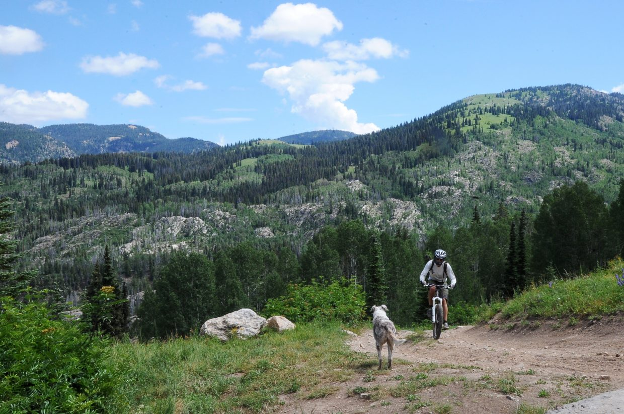Chris Speer rides on a rugged road on Buffalo Pass while getting some encouragement from his dog, Nellie, at the top of a hill. The U.S. Forest Service is supporting a plan to add several miles of new trail on the mountain pass near Steamboat Springs.