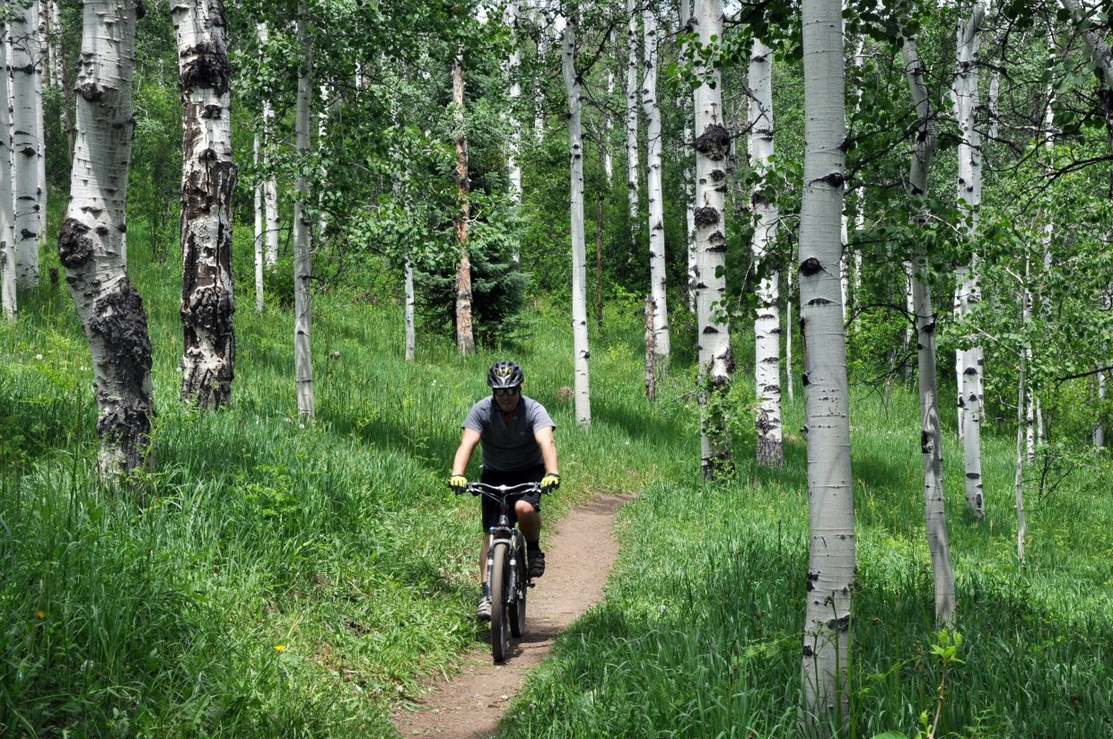 A cyclist zips down a trail near Spring Creek. One of the first lodging tax trail projects included an extension of the Lower Spring Creek Trail to a better pedestrian crossing at Amethyst Drive. The trail extension formed a better connection from downtown Steamboat to the Spring Creek area.