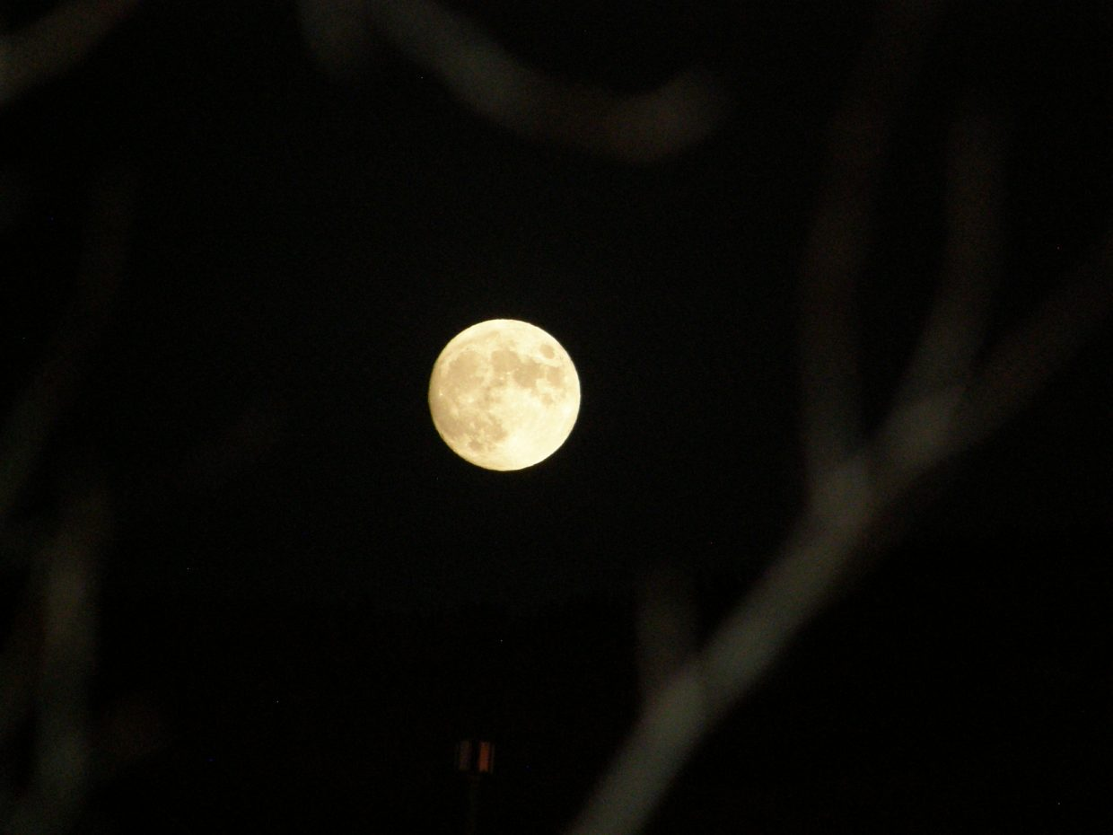 Gorgeopis full moon. Submitted by: Roxanne Pranger.