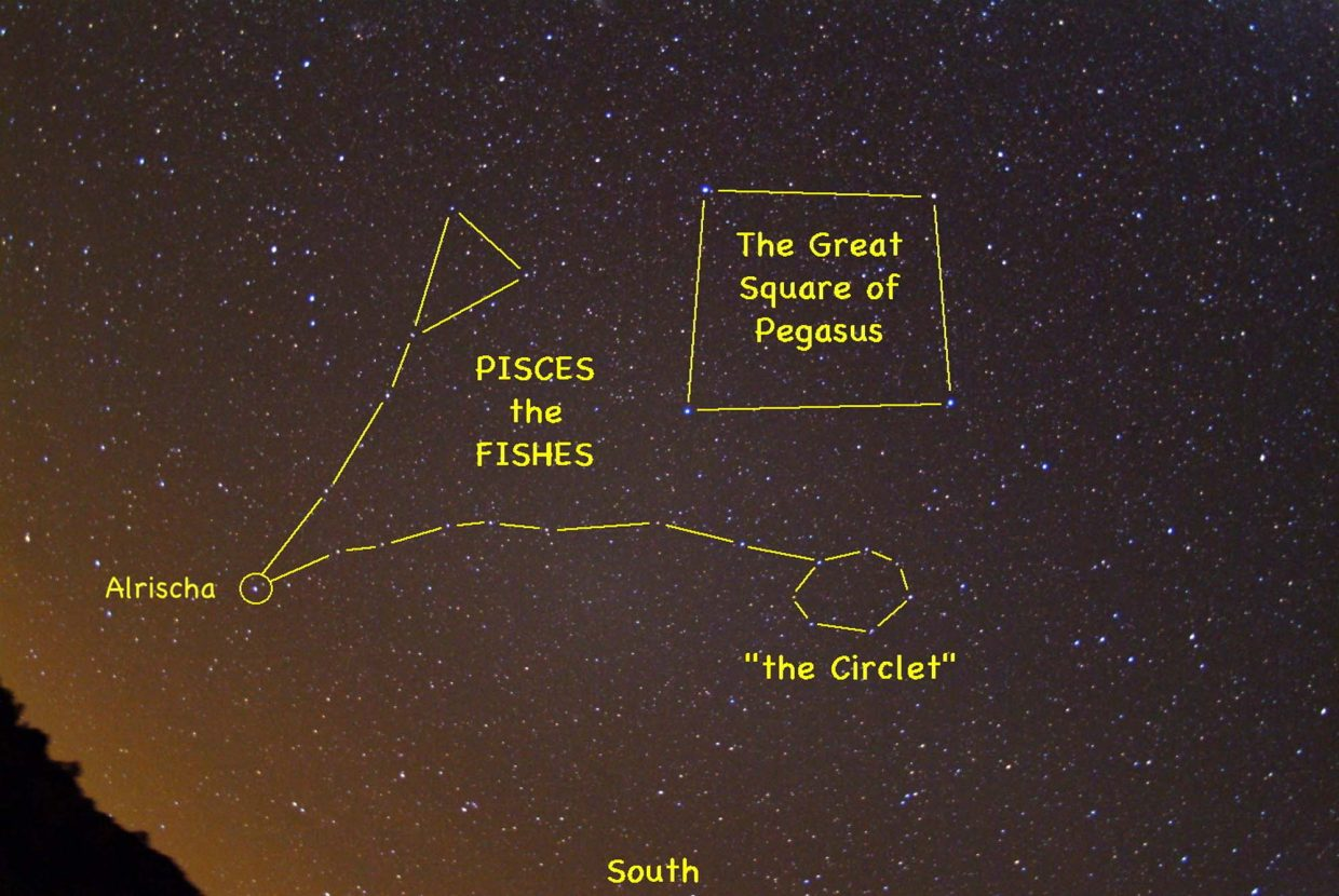 You can catch Pisces, the Fish, during the early evening hours this month. Look high up in the southern sky around 8 p.m. for the Great Square of Pegasus. The Circlet of Pisces is just beneath the Great Square, and the rest of the constellation extends to the south and east.