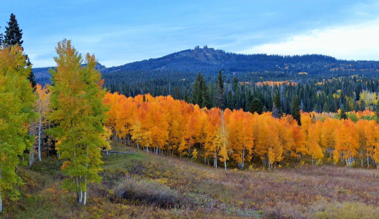 Rabbit Ears Pass is amazing with fall foliage that is glowing. Submitted by: Shannon Lukens