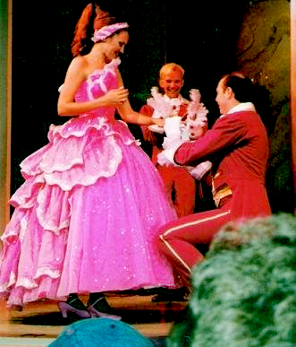 Working at Disney World in Orlando -- she as a dancer and dance captain at the Beauty and the Beast stage show he was in the character department at the Disney/MGM Studios -- locals David and Heidi Jolly have found their happily ever after fairy tale.