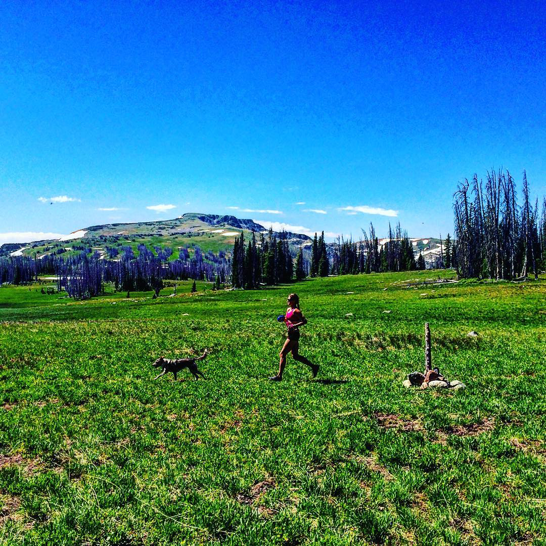 Striding out on the Continental Divide Trail. @itgoesinflag