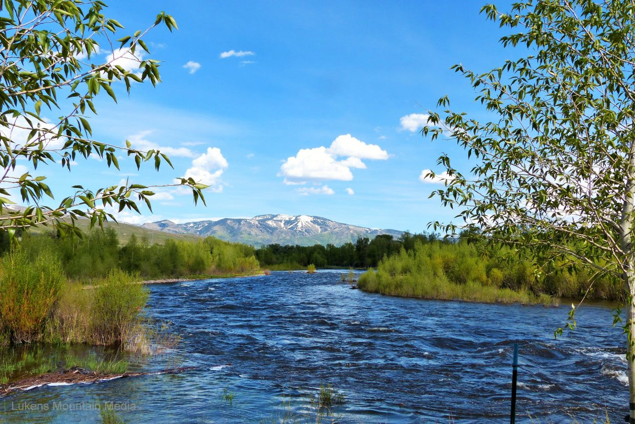 The Yampa River. Submitted by Shannon Lukens.