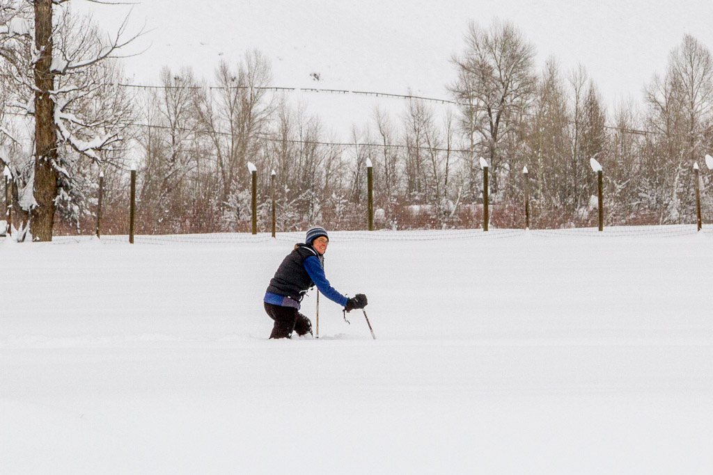Hinrichsen attempts to snowshoe through a field of snow near the Nature Conservancy's Carpenter Ranch for one of her Snow Drawing projects.