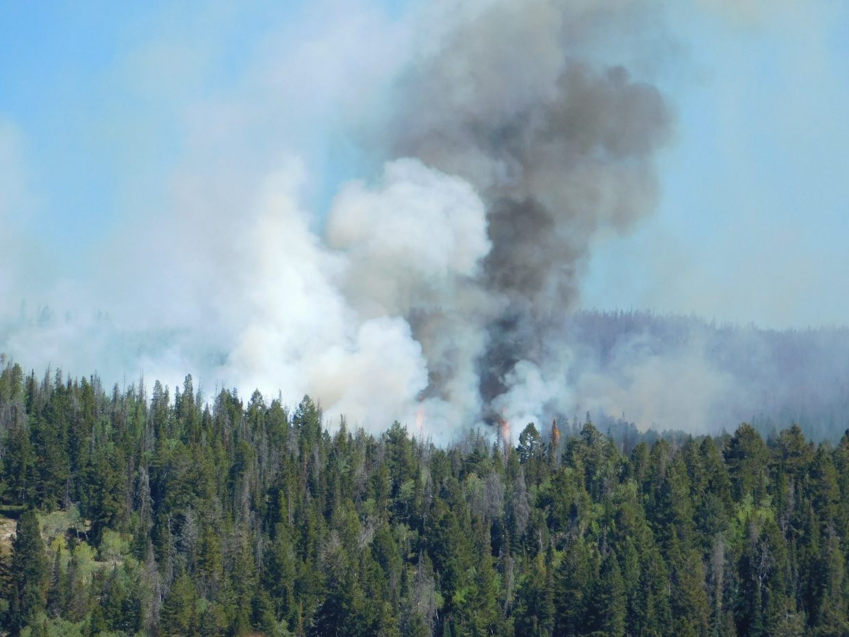 The Silver Creek Fire grew to 125 acres over the weekend, but its behavior is not unexpected.