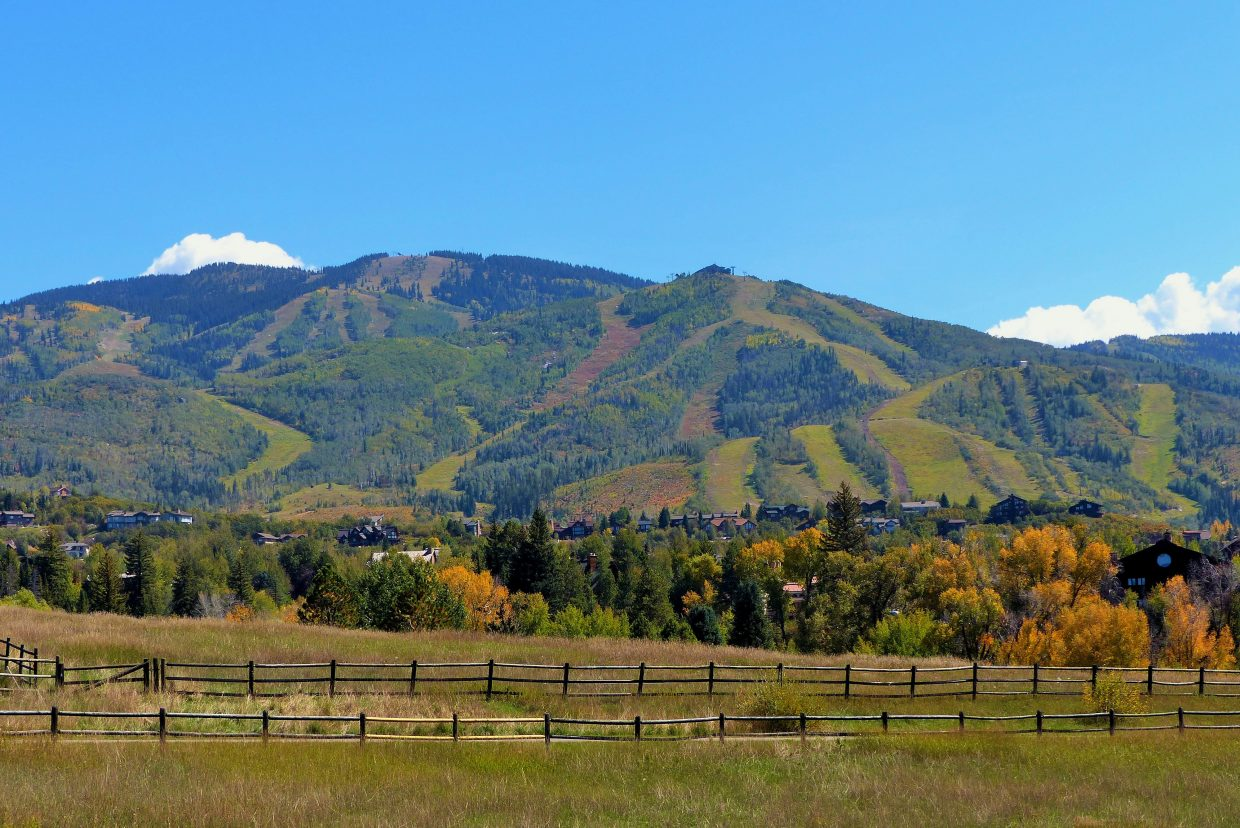 A nice shot of the mountain taken from the Anglers area. Submitted by: Shannon Lukens