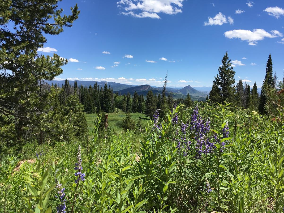 A Steamboat Springs vista. Submitted by Steven Ross.