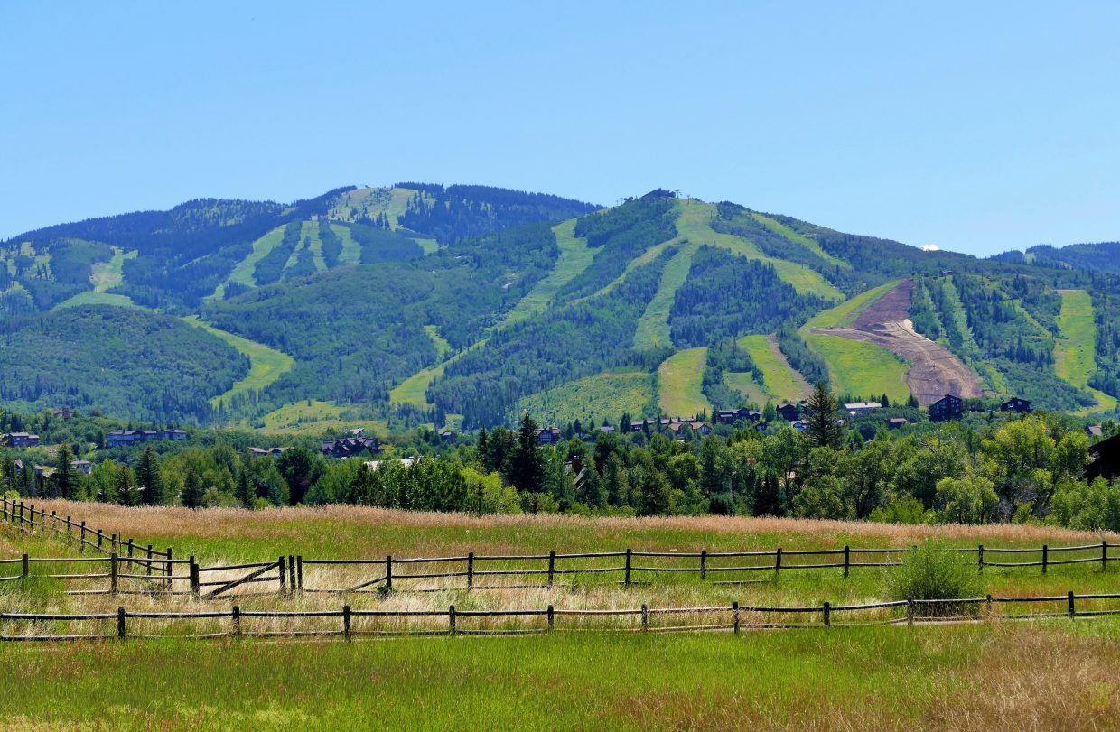 Not a cloud in the sky today. Wow, is it ever beautiful here in Steamboat Springs. Here are two versions of the slopes on the ski area, which are still green except for one part where they are doing construction.