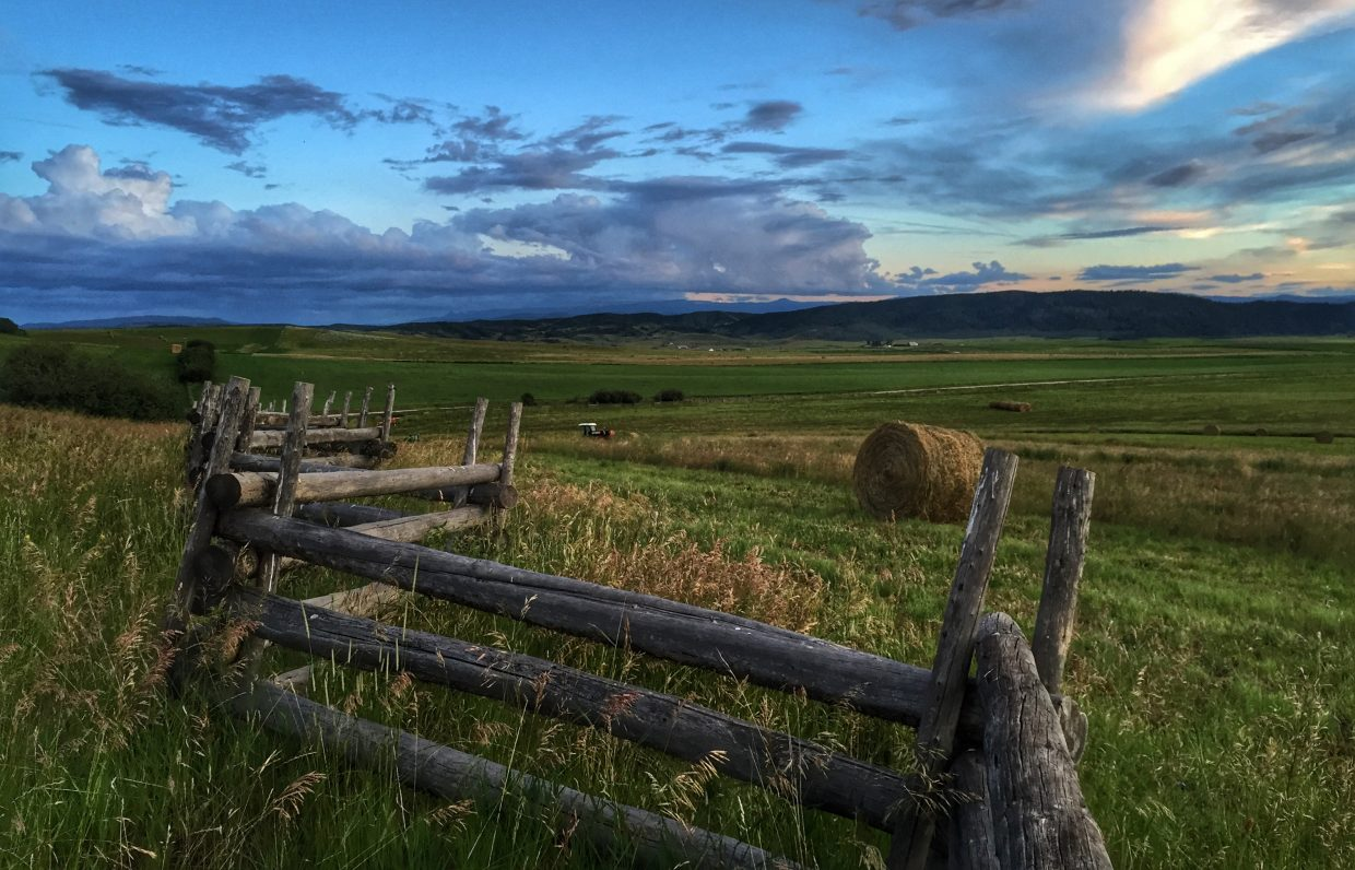 Yampa Valley hay field. Submitted by Chris Lanham.