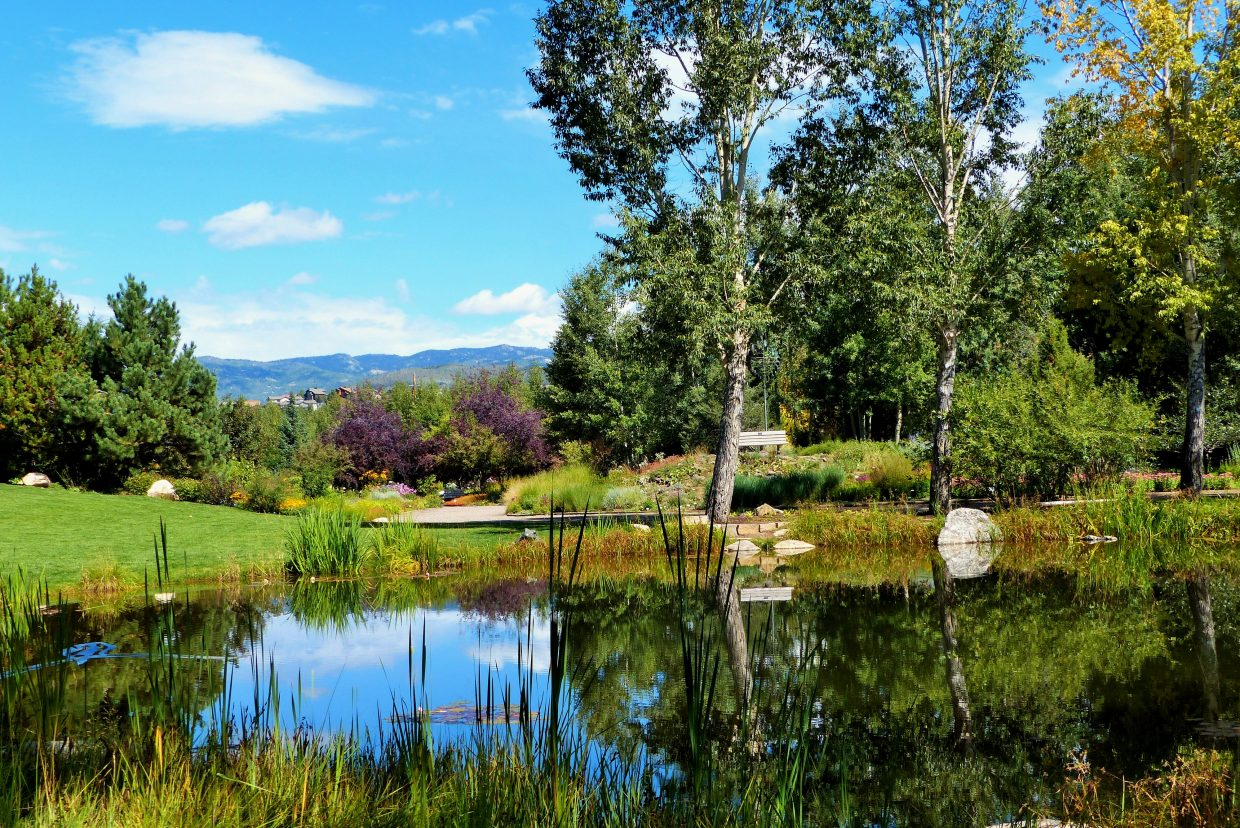 Yampa River Botanic Park. Submitted by: Shannon Lukens