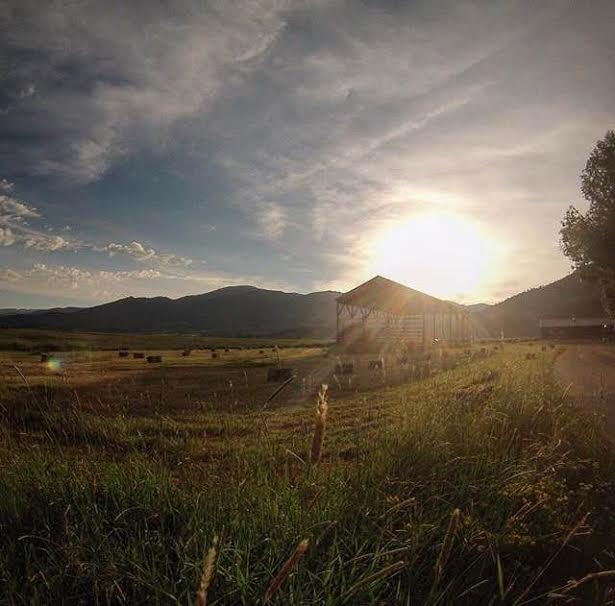 Bails of Hay lay out in the early morning sunshine at Storm Mountain Ranch. from @waistdeepincolorado Instagram. Submitted by Michael Greene.