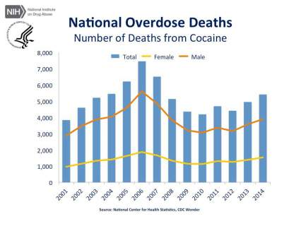 National Overdose Deaths—Number of Deaths from Cocaine. The figure above is a bar chart showing the total number of U.S. overdose deaths involving cocaine from 2001 to 2014. The chart is overlayed by a line graph showing the number of deaths by females and males. From 2001 to 2014 there was a 42 percent increase in the total number of deaths.