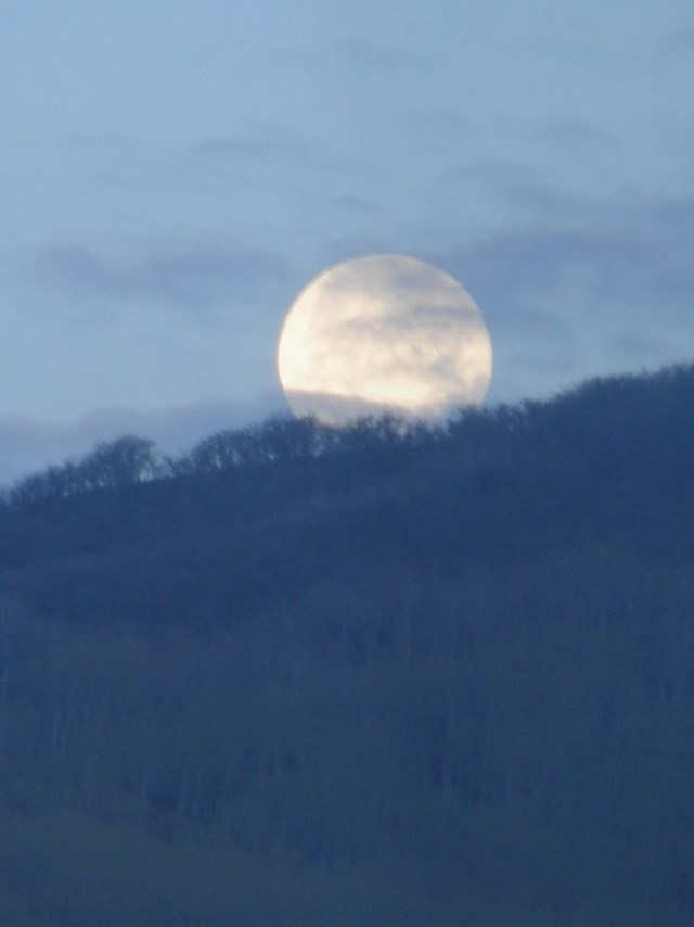 Moon set in Oak Creek. Submitted by: Rex Randall