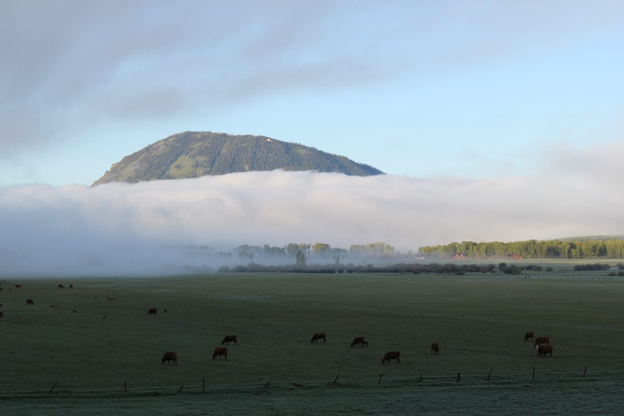 Sleeping Giant in a blanket of fog. Submitted by: Diane Miller