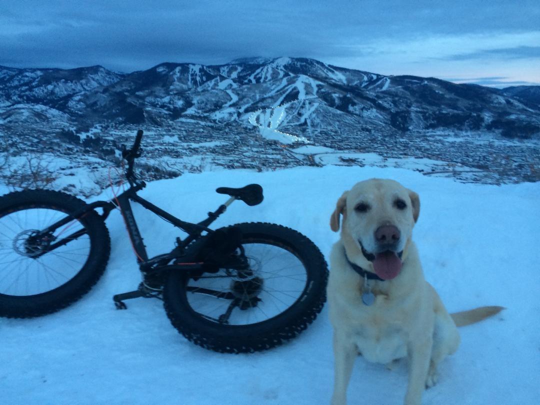 Photo taken by Steve Ganch after riding up Emerald with his dog Quincy. Submitted by: Shelly Shea