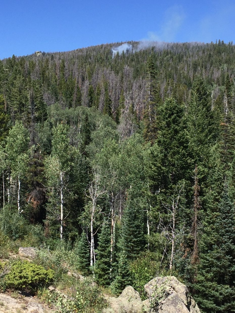 A 1-acre fire was reported Saturday in the Sarvis Creek Wilderness.