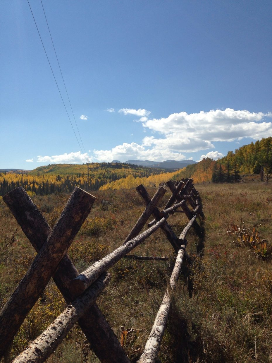 Fall in the Flat Tops. Submitted by: Mary Davies