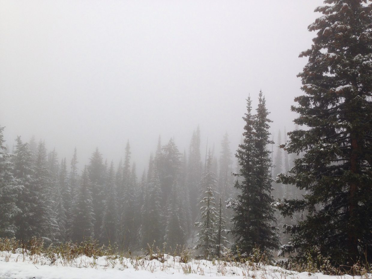 Falling into winter on dunkley pass. Submitted by Mary Davies.