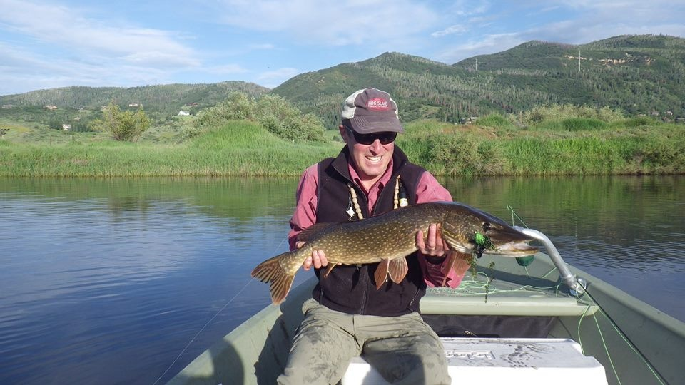 John St. John of local Hog Island Boat Works with a pike. Yampa River, south of town. June 2014. Submitted by: Dylan Roberts
