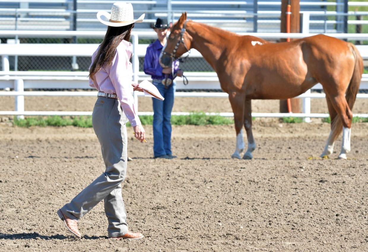 Judge Sarah Kawcak keeps a close eye on the competitors while judging the 4-H horse show at the Routt County Fairgrounds Monday.