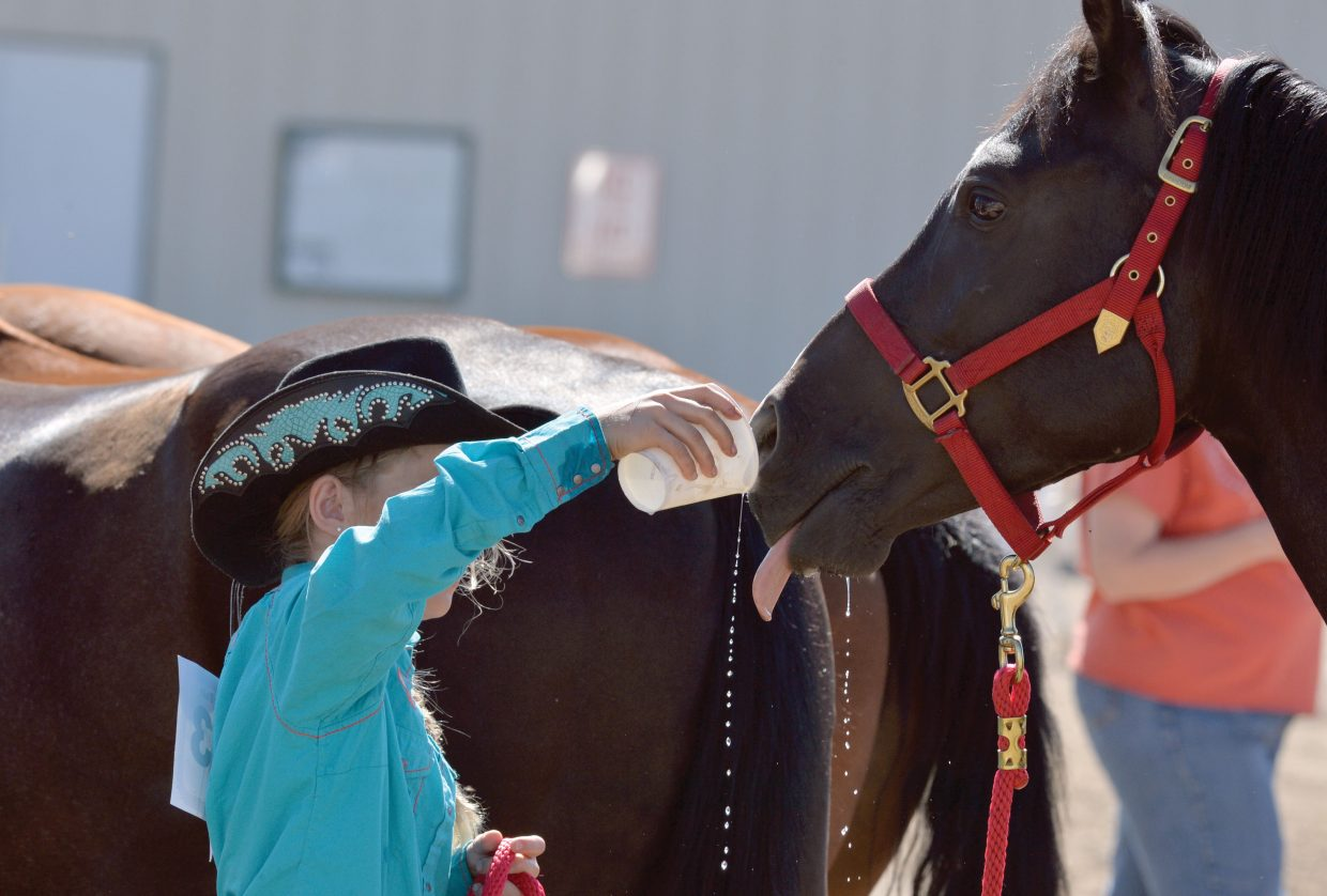 Isabella Mecca offers her horse a drink during the 4-H horse show at the Routt County Fairgrounds Monday morning.